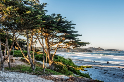 The Beach at Carmel
